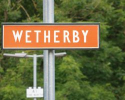 Wetherby Racing Tips
